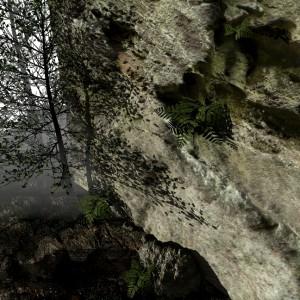 Skała w lesie- autorka dr n.t. Monika Marecka