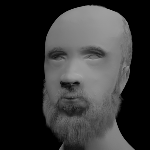 human face- autor Krystian Duc